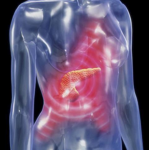 продукцию самых при панкреатите боли в животе возможны помощью раскроя