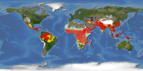 Карта мира. Красным цветом показаны области, где наиболее часто регистрируются случаи заболевания малярией