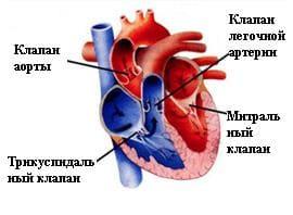 Что такое приобретенный порок сердца и его симптомы