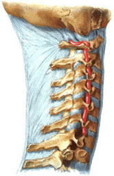 http://www.medicalj.ru/pics/nestabilnost.jpg